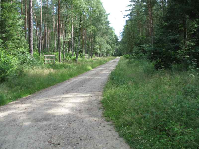 Graded Gravel Road - Planiertee Schotterstraße: