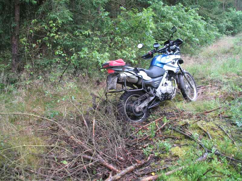 Holzreste im Grünstreifen