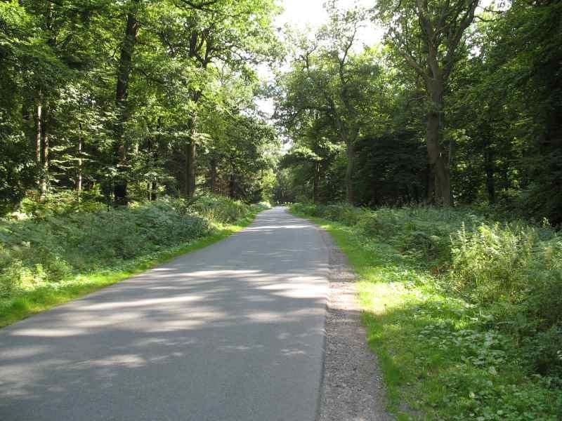 Walsweg