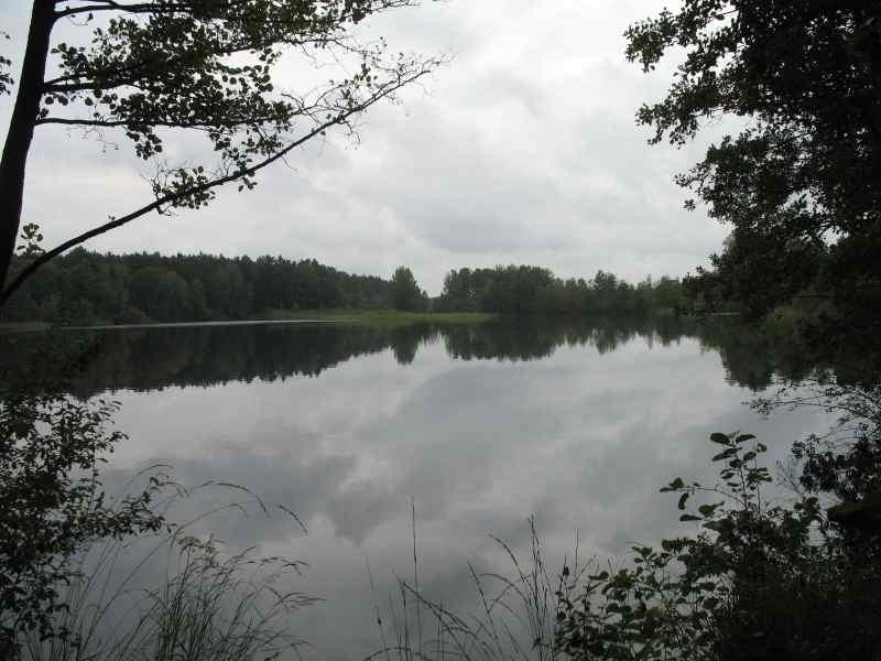 See mitten im Wald bei Eschede