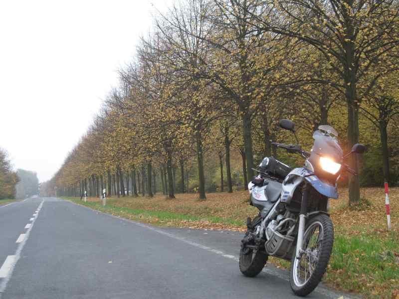 Ein grauer Herbsttag in Braunschweig - Madamenweg