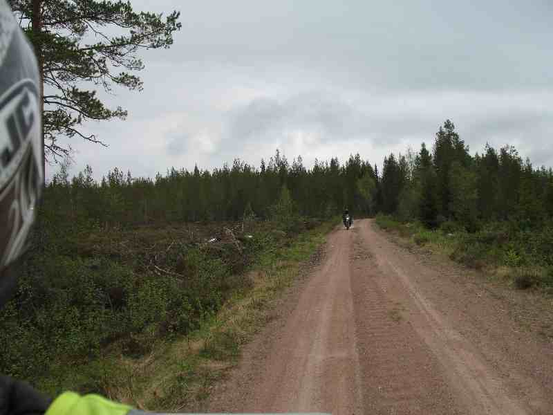 durch Schwedens Wälder geschottert