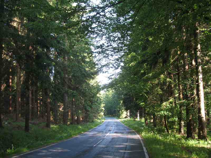Strasse im Erzgebirge