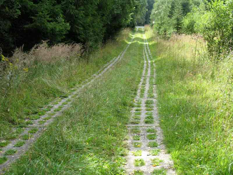 Kolonnenweg