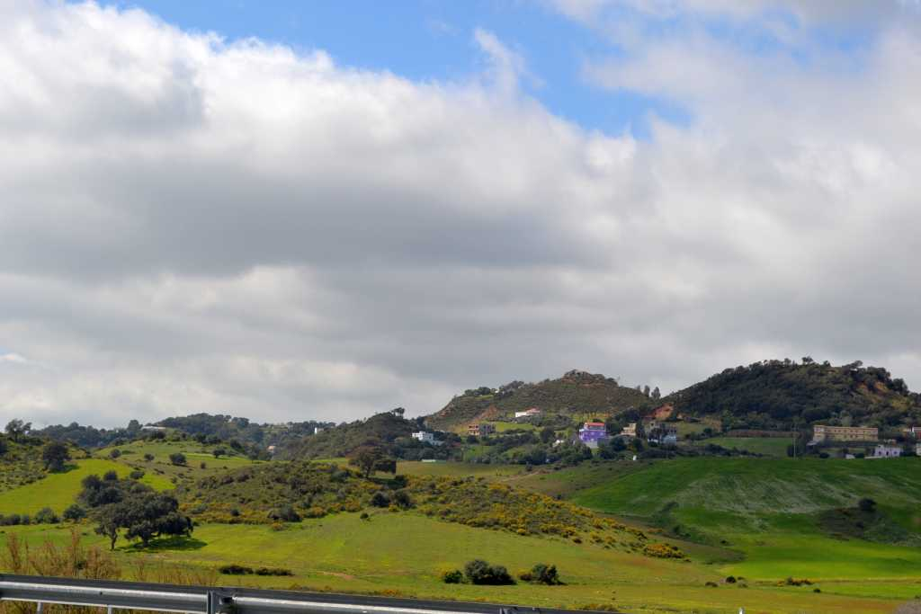 Grünes Land links und rechts der Straße