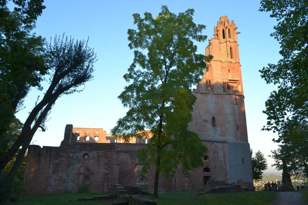 Klosterruine Landau