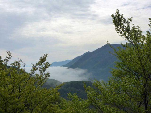 Hochebene unter Nebel