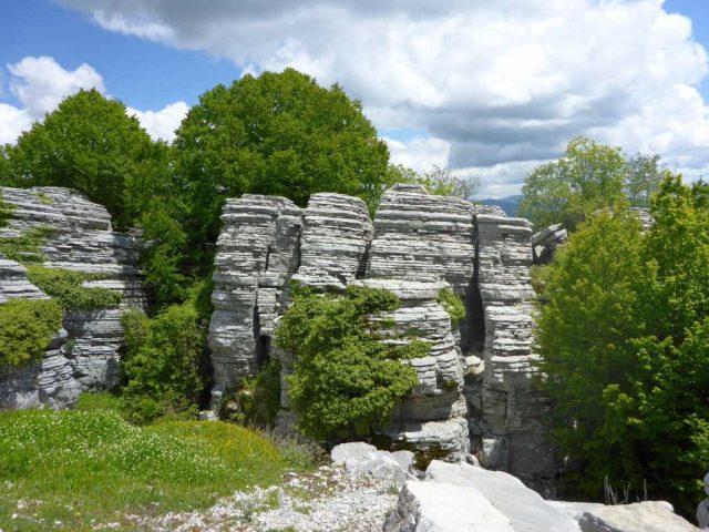 Wald der Steine