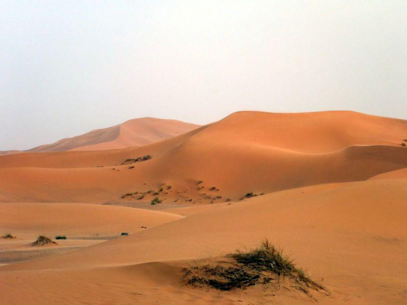 ab in den Sand