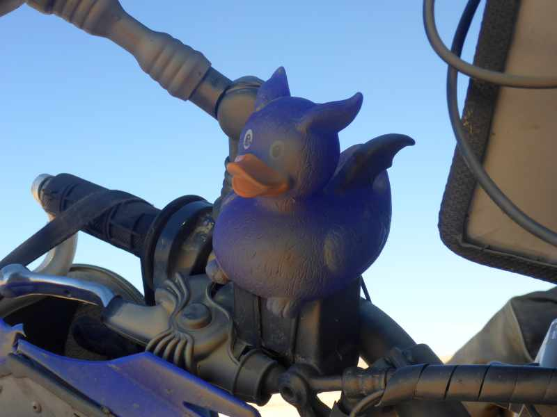 die kleine blaue Ente
