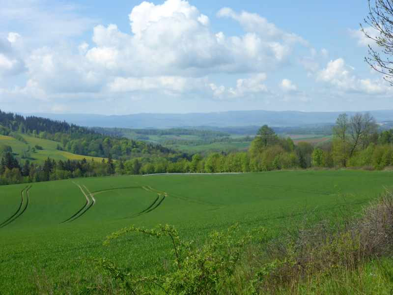weiche Landschaft