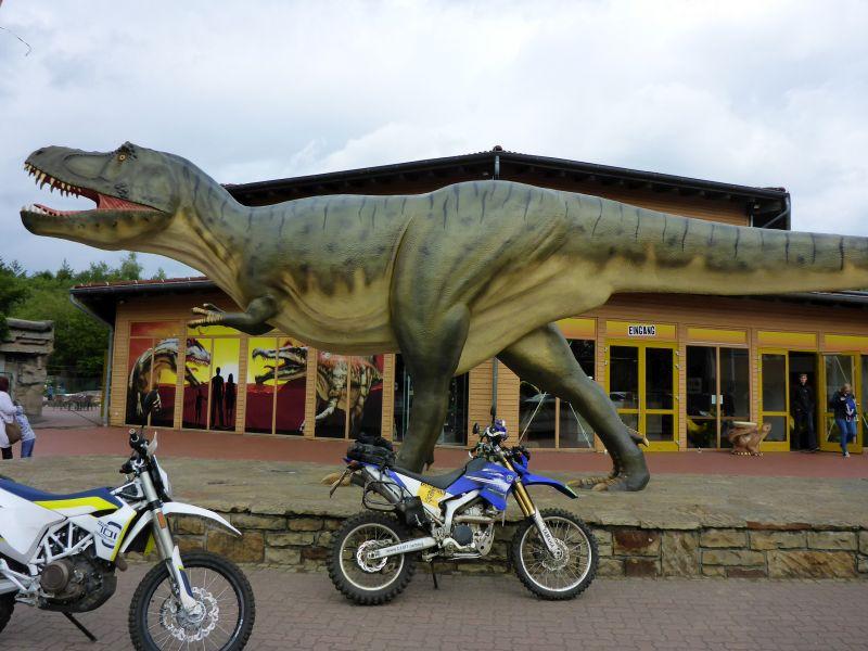 Besuch beim Dinosaurier