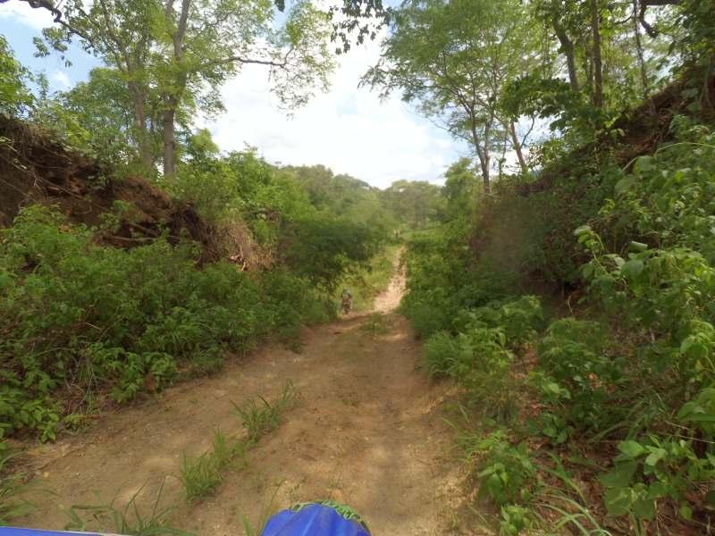 Naturbelassener Weg