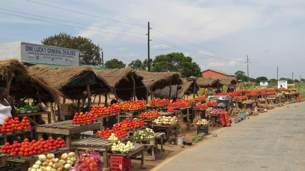 Markttag: Tomaten - Zwiebeln - Kartoffeln