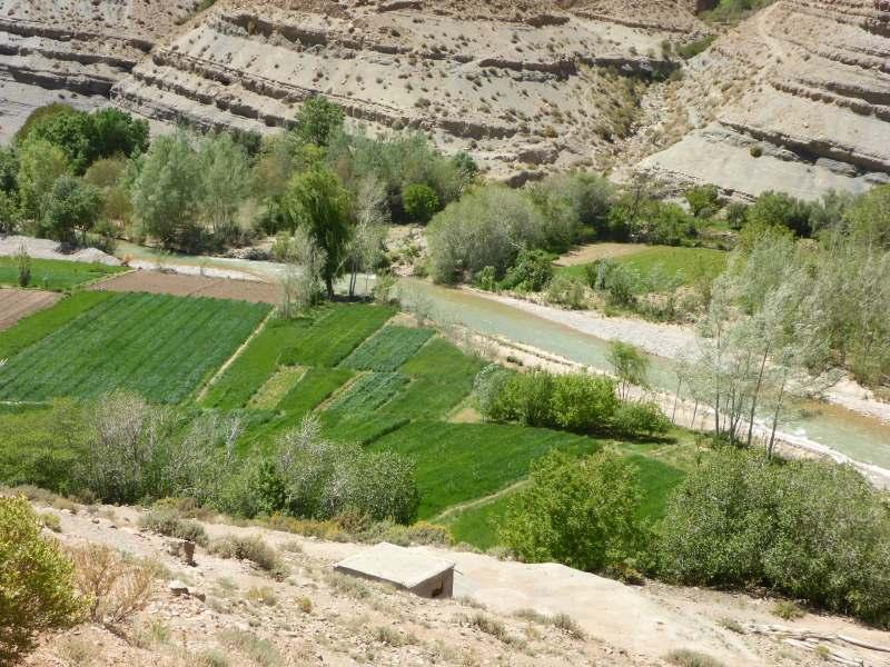 kleinfeldrige Landwirtschaft