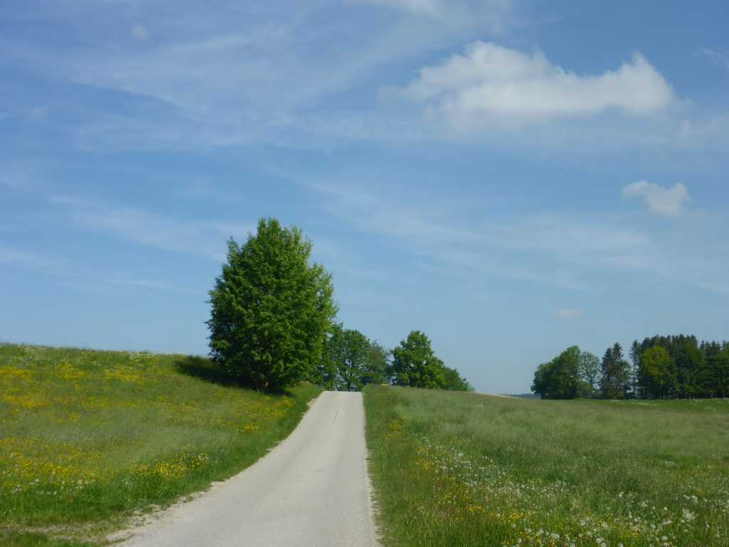 kleine Straße